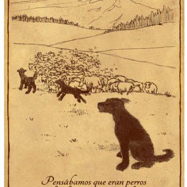 Lobos, perros, ovejas y borregos